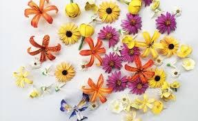 the 3doodler the world u0027s 100 3d flowers 81 best machine embroidery pam u0027s 3d