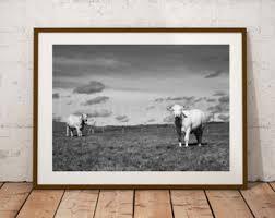 cow art print etsy
