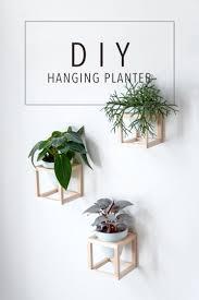 hanging planters row of potted plants on grey wooden floor indoor hanging planters