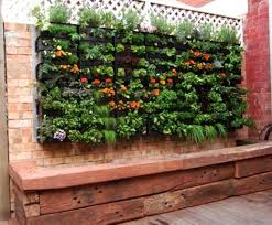 small garden wall ideas landscaping vertical planting trellises