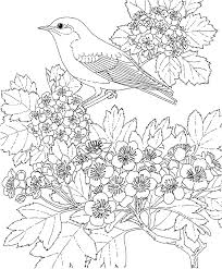 puppy coloring pages to print coloring pages wallpaper