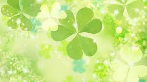 free download four leaf clover wallpapers hd page 2 of 3