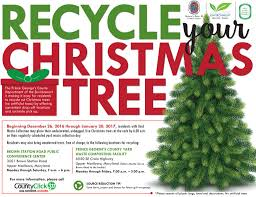 holidayhero recycle your tree bowie md patch