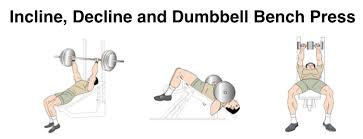 Dumbbell Bench Press Form How To Perform Bench Press Exercise For Bigger Chest Muscles