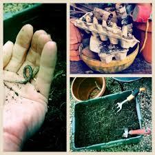 Soil Mix For Container Gardening - 47 best garden soil images on pinterest garden soil garden