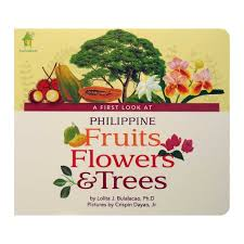 fruits flowers a look at philippine fruits flowers trees pumplepie