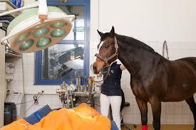 Augenarzt Bad Mergentheim Tierärztliche Klinik Dr Wilhelm Thevis