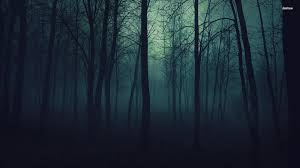 spooky wallpapers dark spooky wallpaper background 1920 x 1080 hd dark forest wallpaper wallpapersafari