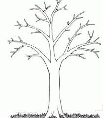 printable tree leaves coloring kids tree coloring