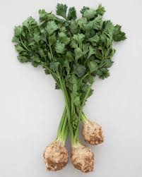 Green Root Vegetables - celery root recipes martha stewart