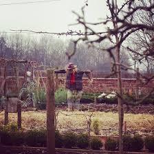 kitchen garden heaven scent gardens