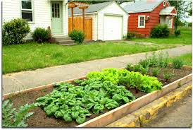 Garden Layout A Vegetable Garden Layout For Beginner Gardeners
