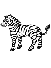 realistic african animal zebra coloring pages womanmate com
