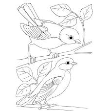 click to see printable version of birds coloring page free