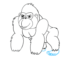 how to draw a gorilla face best chimpanzee and gorilla image and