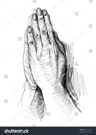 praying hands realistic sketch not autotraced stock vector