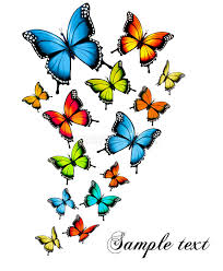 beautiful butterfly background stock photo image of