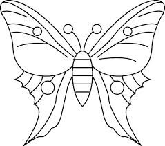 simple butterfly drawing coloring page print