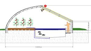 Backyard Greenhouse Designs by Basic Requirements For Aquaponics Commercial Farming