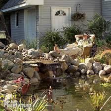 Fish For Backyard Ponds Backyard Ponds The Family Handyman