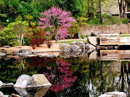 landscaping with native plants japanese garden 60 photos to create an incredible space home