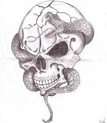 cool drawing of skulls drawing library
