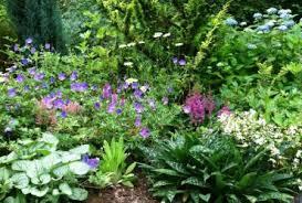 perennial herb garden design 1000 images about herb garden plans