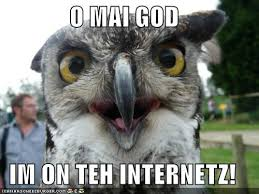 Internets Meme - animal capshunz internets funny animal pictures with captions
