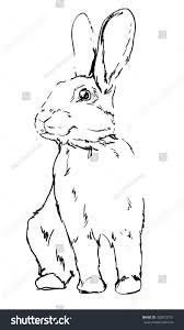 rabbit vector cute hare rabbit sketch stock vector 428912791