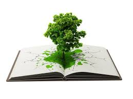 tree in book by hamioui deviantart on deviantart 3d
