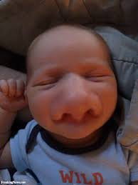 Big Nose Meme - funny fun lol wtf people giant huge nose pics images photos
