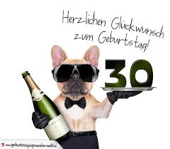 lustige sprüche zum 30 geburtstag frau glückwunschkarte mit hund zum 30 geburtstag geburtstagssprüche welt