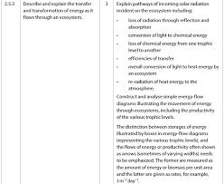 light me up math worksheet answers ecosystem worksheet answer key worksheets for all download and
