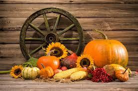 autumn pumpkin wallpaper autumn pumpkin food vegetables still life