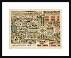 chicago map brookfield zoo poster print cartoon map