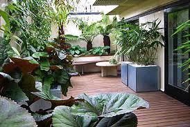 Garden In Balcony Ideas Balcony Gardens Prove No Space Is Small For Plants