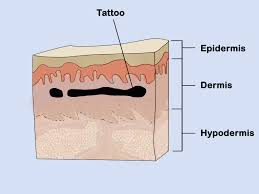tattoo design trial run how to try on a tattoo before you ink it 3 ways to practice tattooing wikihow