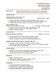Sample Formal Resume by Download One Page Resume Examples Haadyaooverbayresort Com