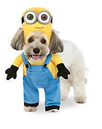 costumes for dogs bob minion dog costume despicable me mr mac leash mrs