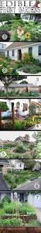 40 best front yard veggie gardens images on pinterest vegetable