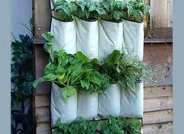 hanging herb garden indoor greenhouse indoor outdoor wall mount