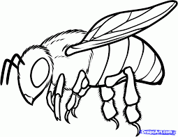 coloring pages draw a bee coloring page blog