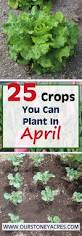 Vegetable Garden Planting Calendar by Stoney Acres Page 4 Of 84 Gardening Cooking U0026 Healthy Living