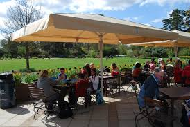 Giant Patio Umbrella by Giant Umbrellas Simple Well Engineered Shade U0026 Rain Protection