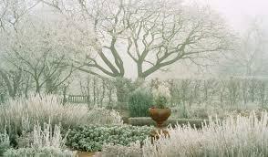 Herb Garden Winter - anatomy of a garden gardens herbs garden and herbs