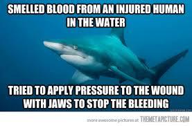 Funny Shark Meme - misunderstood shark the meta picture