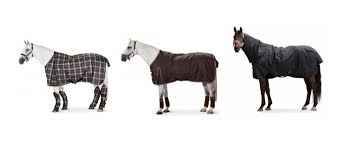 Outdoor Rugs For Horses Rugs Blankets For Horses Equestrian Shop
