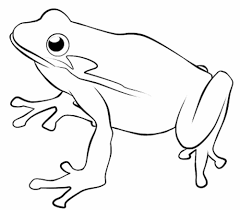frog and toad coloring pages frog nature coloring page for kids