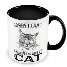 California How To Travel With A Cat images Crazy cat lady mugs travel cup beer cup present coffee mug tea jpg