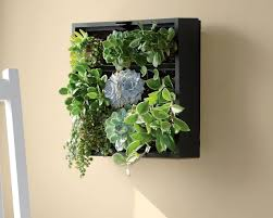 amazing living wall panel indoor planter full size of living